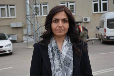 Özgökçe'den Ahıska Türkleri ve Suriyeli mültecilerle ilgili soru önergesi