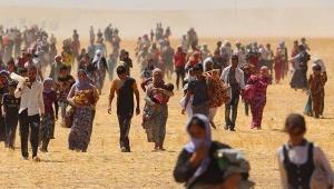 Hepimiz mülteci olabiliriz!